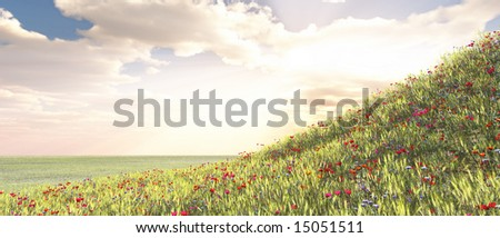 Wheat field with flowers #15051511