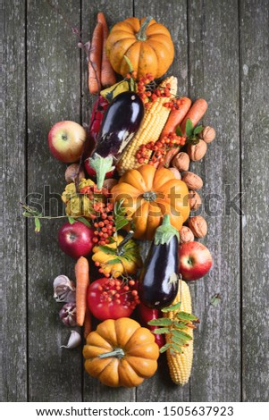 Autumn background with raw vegetables on rustic wooden background.. Autumn seasonal cooking concept. Top view  #1505637923