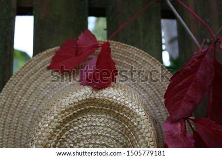 Texture of straw hat and red autumn leaves. Headgear on the street on a wooden fence near the farm. #1505779181