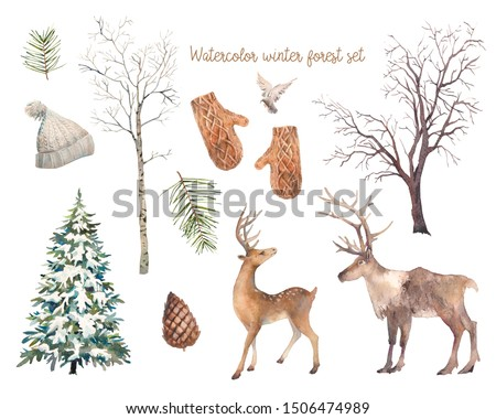 Winter trees and animals set. Watercolor silhouettes of snow covered Christmas tree, birch and elm, deers, bird, pinecone.
