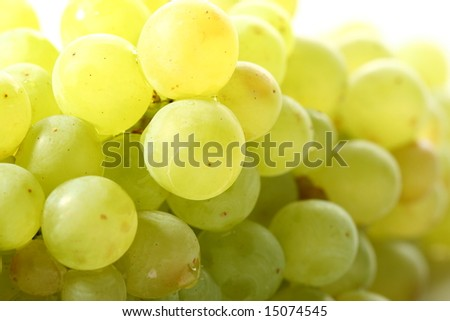 green grape #15074545
