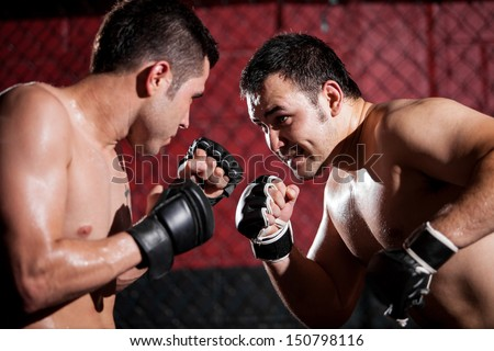 Portrait of a couple of mixed martial arts fighters during a fight Royalty-Free Stock Photo #150798116