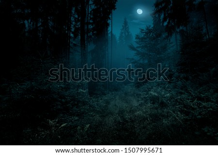 Full moon over the spruce trees of magic mystery night forest. Halloween backdrop. #1507995671