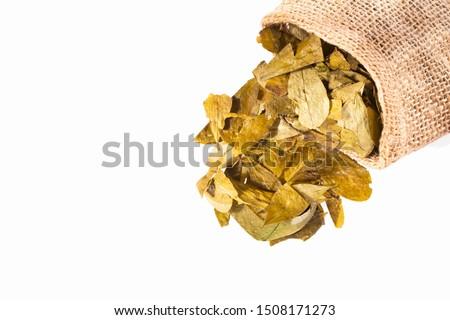 Erythroxylum coca - Dried coca leaves #1508171273