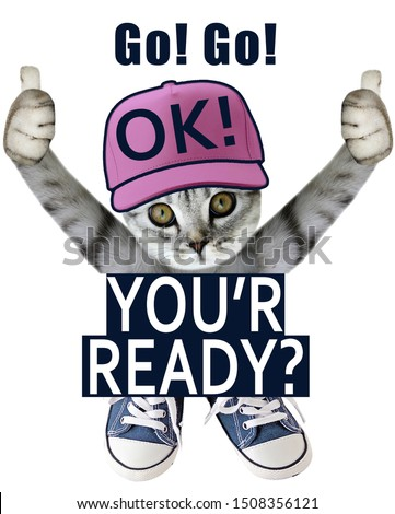 cute  cat your ok slogan