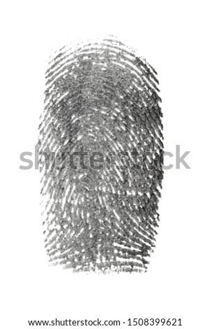 fingerprint pattern isolated on white #1508399621