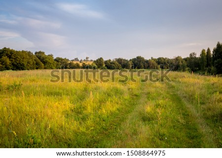 Summer landscape at sunset. Green field against gray clouds and blue sky. In the foreground is green grass, a road and a small forest. Russia #1508864975