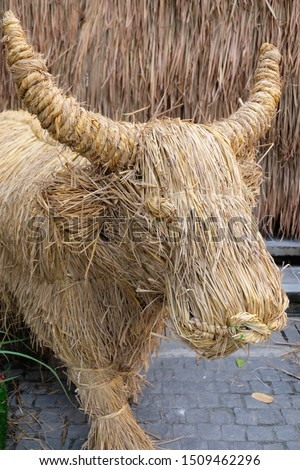Art of dry straw.Buffalo.Straw, dry straw, straw background.  #1509462296