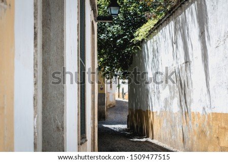 Evora, Portugal - May 5, 2018: Typical House architecture detail of historic town center on a spring day #1509477515