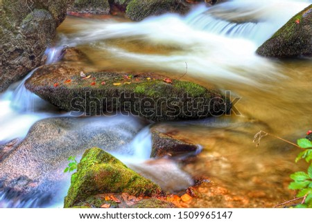 landscapes in mountain, river  and leaves  in the forest autumn #1509965147