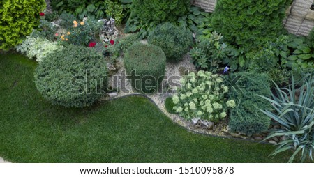 Green juniper bush trimmed in cylinder shape, use in landscaping #1510095878