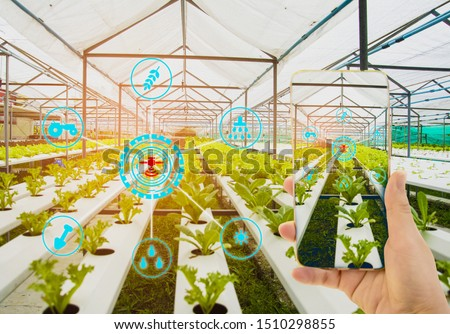 Hand holding smartphone,Organic farm background,Concept agricultural product control technology,agriculture futures trading world market,Using technologies track productivity,Satellite for Agriculture #1510298855