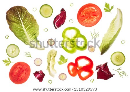 Romaine lettuce leaves, radicchio, slices of green and red peppers, tomato and red scallion slices, cucumber slices, dill and parsley backlit on a light table. Isolated on a white background. #1510329593