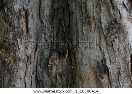 Dark tree bark texture, for background and wallpaper #1510580414