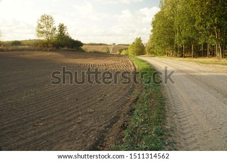 A rural scene, gravel road between arable fields. Agricultural land in the countryside of Latvia, Europe. Little bit cloudy blue sky in sunny summer evening. #1511314562