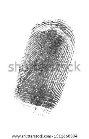 fingerprint pattern isolated on white #1511668334