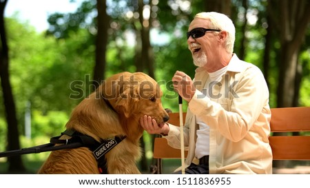 Positive blind man feeding guide dog, sitting in park, nutritious canine food #1511836955