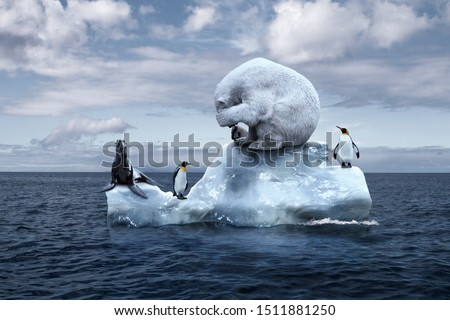 globally warming. climate change. the bear cries closing its face with its paws. polar bear, penguins and fur seal sits on a melting glacier in the middle of the ocean. ecological catastrophe #1511881250