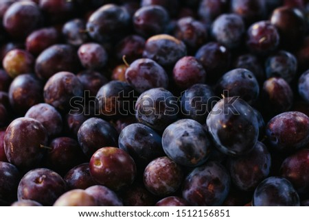 Macro Photo food fruit plums. Texture background of fresh blue plums. Image fruit product blue plums #1512156851