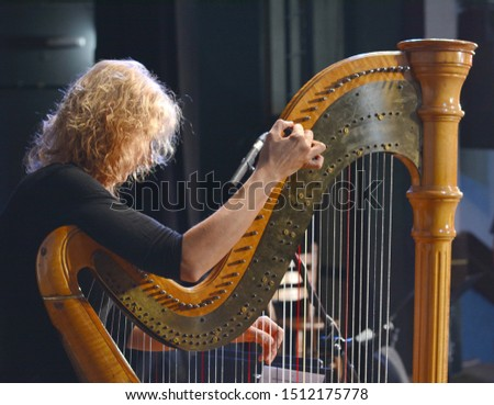 The musician tweaks the harp. Harp player. Classical musician harpist playing harp. Female musician playing the harp. #1512175778