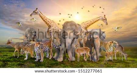 Large group of african safari animals. Wildlife conservation concept #1512277061