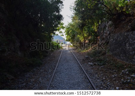 A small rail track path throught the trees #1512572738