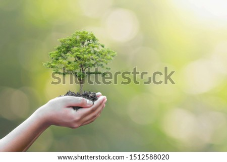 Tree planting on volunteer family's hands for eco friendly and corporate social responsibility campaign concept #1512588020