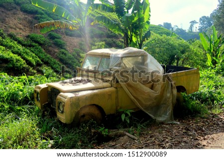 old vintage abandoned yellow car pic up in the side of the road near to tropical nature jungle (malaysia)