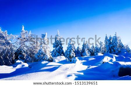 Winter snow nature landscape. Snowy winter forest scene. Winter snow forest view. Winter snow forest landscape #1513139651