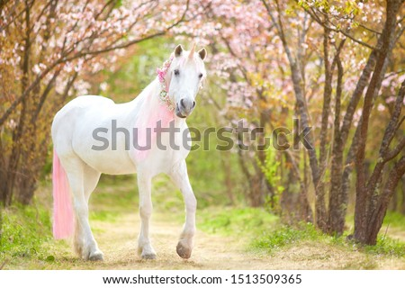 photo of a snow-white unicorn with a pink and white mane and tail in a spring flowering garden, a magical garden. #1513509365