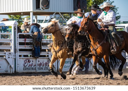 Rodeo and Bronco Riding at Pincher Creek Canada, June 16, 2019 #1513673639