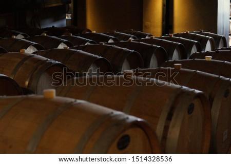 Lujan de Cuyo, Mendoza / Argentina - 09/14/2019.  Typicall wine cellar with oak barrels                               #1514328536