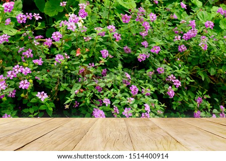 Empty top wooden table on closeup beautiful purple flowers blooming in garden #1514400914