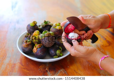 Close up of woman's hands cutting fresh mangosteens. Purple mangosteen as tropical fruit peeling with knife in women's hands #1514408438