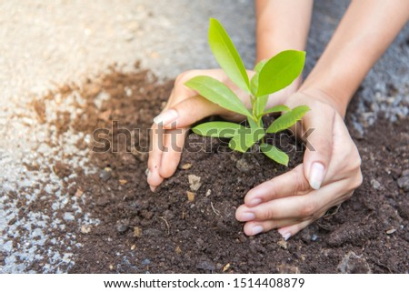 Child and parent hand planting young tree on black soil together as save world concept #1514408879
