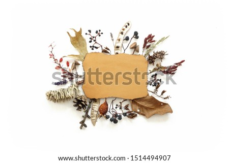 Dried flowers leaves and berries composition around ragged yellow sheet of paper . Beautiful autumn treasures photo #1514494907