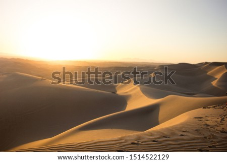 Early morning sunrise over the Glamis Sand Dunes in Southern California. #1514522129