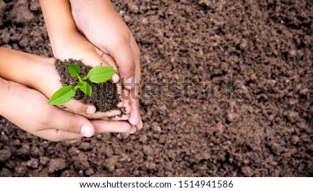 Environment Earth Day ,Woman and children are helping holding green seedling on soil, top view, Space for text, Forest conservation concept. #1514941586