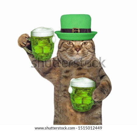 The cat in a green hat with two mugs of beer celebrates St. Patricks Day. White background. Isolated.
