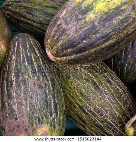 Macro Photo food fruit asian  melon. Texture background food colorful fruit yellow green melons. Image of food product fruit melon #1515023144