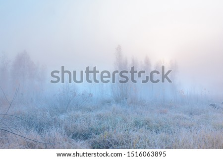 Beautiful autumn misty sunrise landscape. November foggy morning and hoary frost at scenic high grass meadow. Royalty-Free Stock Photo #1516063895