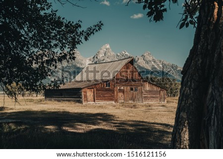 The Famous T.A. Moulton Barn through the tree leaves in the Historic Mormon Row District of Grand Teton National Park, WY, USA. The most photographed barn in America and took over 30 years to build. #1516121156