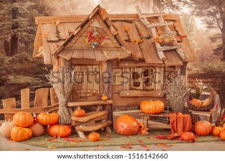 fairytale oak house, interior decor, autumn background with pumpkins.