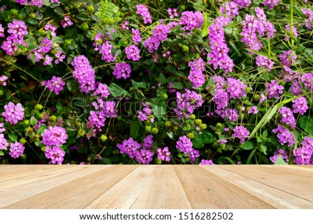 Empty top wooden table on beautiful purple flowers blooming in nature #1516282502