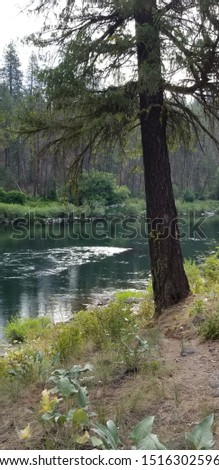 Summer River in Spokane Washington #1516302596