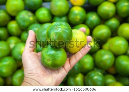 Hand of customer to choose the tangerine for selection of quality, selection of green tangerines in the store, a male hand holds three tangerines #1516500686