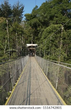 Portrait of the Situgunung Suspension Bridge. This suspension bridge is the longest in Southeast Asia. Situgunung area is part of the Mount Gede Pangrango National Park #1516742801