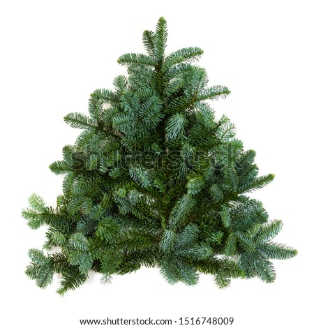 Small christmas tree made of branches isolated. #1516748009
