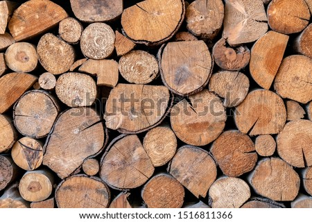 Pile of wooden logs stacked together on top of each other. Wall of stacked wood logs as background. stack of logs. Stack of firewood close up. Logs cuts prepared for fireplace.  #1516811366