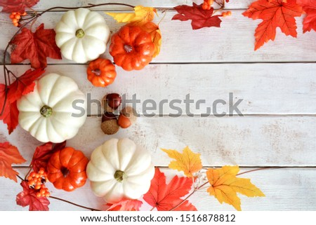 Vivid ornamental pumpkins and leaves in an Autumn display on rustic wood background.  Room for your text.